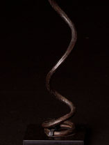 African currency Snake coil detail.jpg