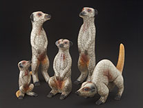 rakumeerkatfamily0712.th.jpg